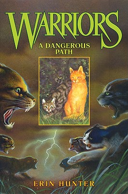 A Dangerous Path By Hunter, Erin